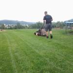 Košnja trave 1