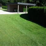 Košnja trave 3
