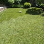 Polaganje trave 4